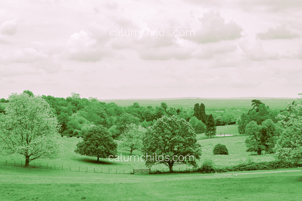A duotone photo of a bright green/turquoise landscape with trees and fields and a slight purple sky.