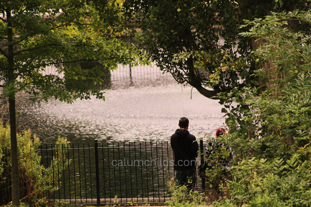 Two people, with their backs to the camera, are surrounded by trees and large bushes as they look out across the lake.