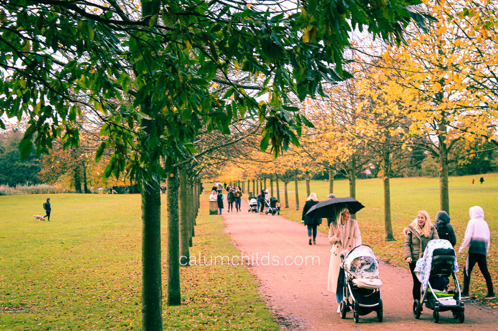 A long straight path in with yellow-leaved trees on either side. Two women are pushing prams in the foreground.