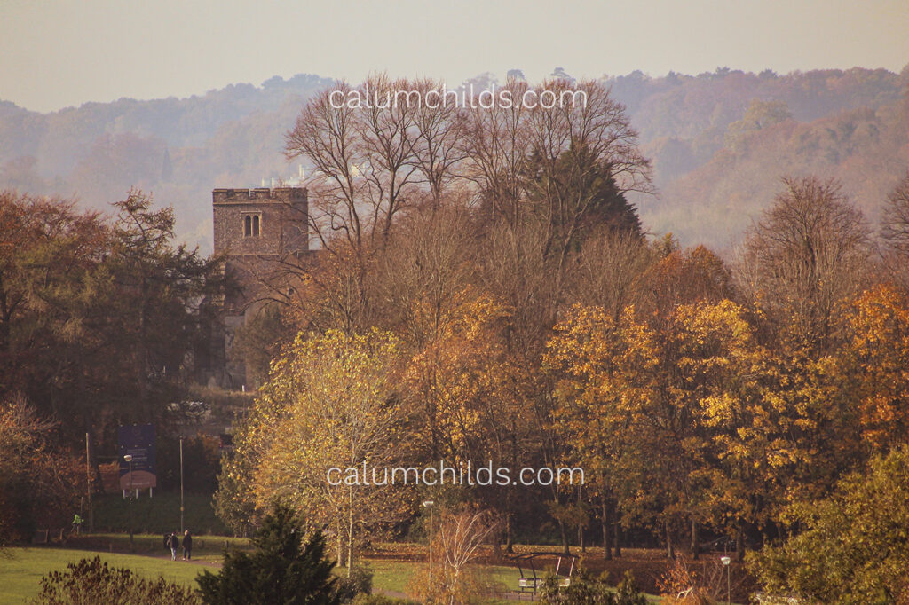 A church tower poking out in the middle of an autumnal view.